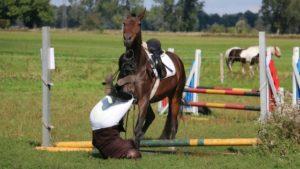 Reiter Unfallversicherung